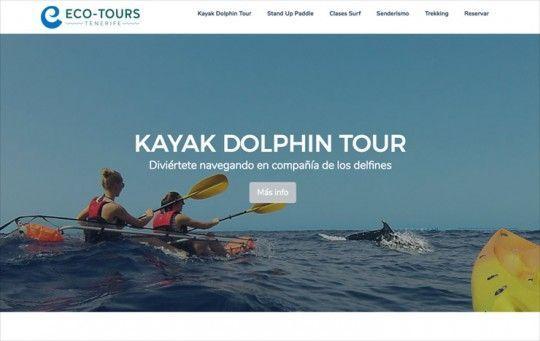 Página web de Ecotours Tenerife